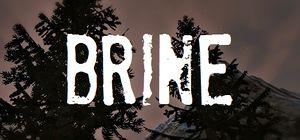Brine cover