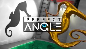 Perfect Angle cover