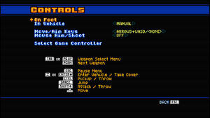 In-game control settings (for keyboard).