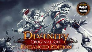 Divinity: Original Sin - Enhanced Edition cover