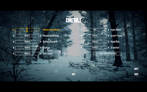 In-game controls settings