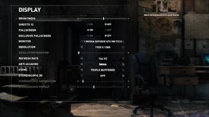 In-game display settings (Steam version).