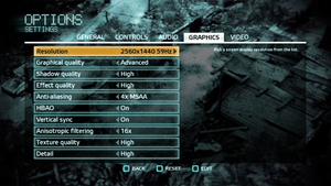 In-game graphics settings (for multiplayer).