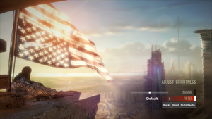 In-game brightness settings.Available filters are Default, Vintage, and Vibrant.