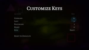 In-game key customization menu.