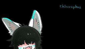 Chlorophos cover