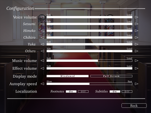 General settings for Steam version of the game.