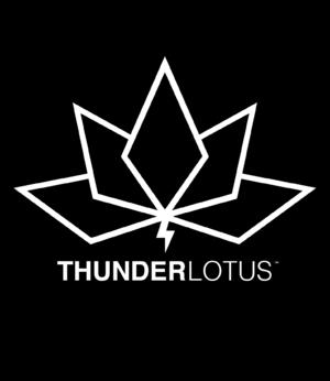 Company - Thunder Lotus Games.png