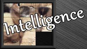 Intelligence cover