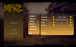 In-game screen settings