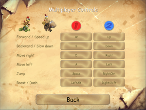 Multiplayer input settings.