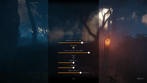 In-game basic graphics settings