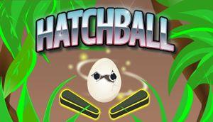 Hatchball cover