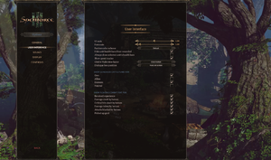 In-game user interface settings.