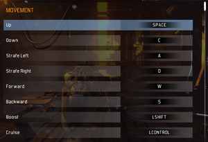 In-game control bindings.