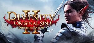 Divinity: Original Sin II - Definitive Edition cover